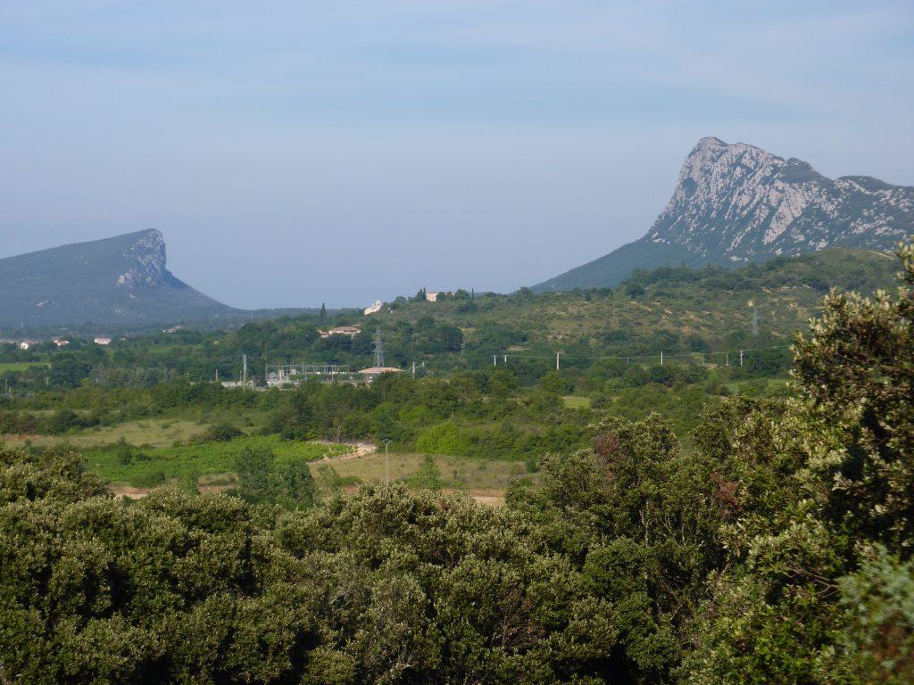 Le Pic St Loup et l'Horthus (vus depuis le Mas de Bouis)